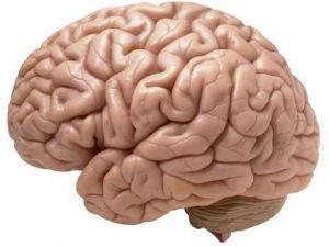 Beyin Kanaması Nedir ?