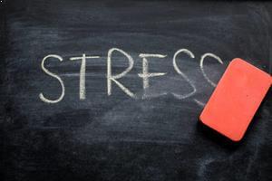 Stres Kaynakları Nelerdir